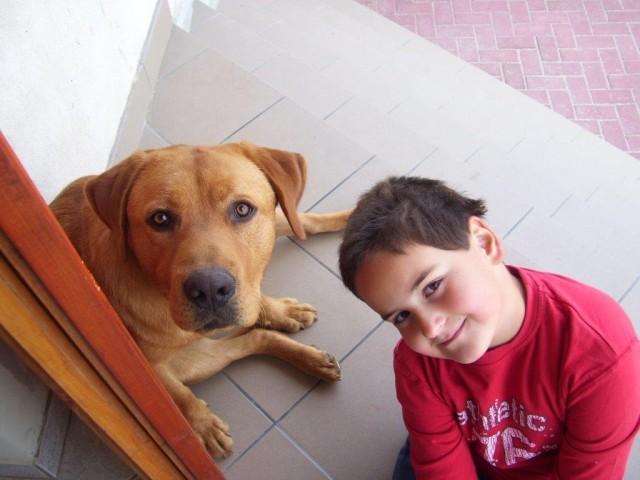 Barni és Rexi (2008)